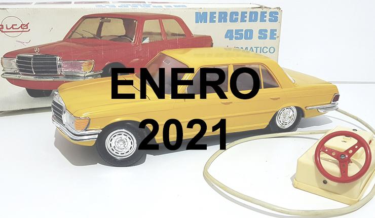 ENERO21 MS